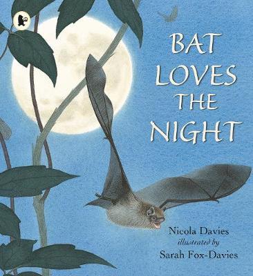 Bat loves the night