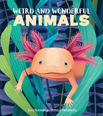 Weird and wonderful animals
