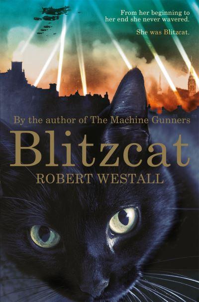Blitzcat