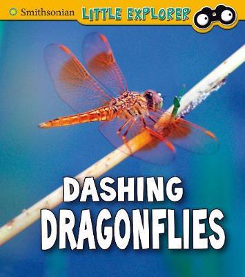 Dashing dragonflies