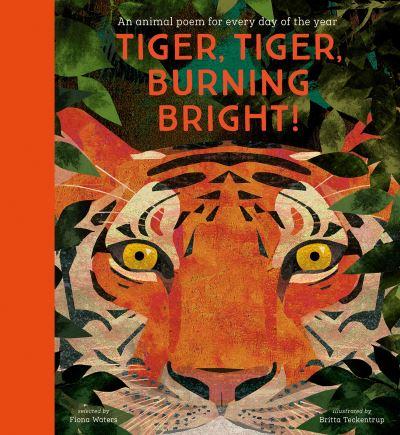 Tiger, tiger, burning bright!