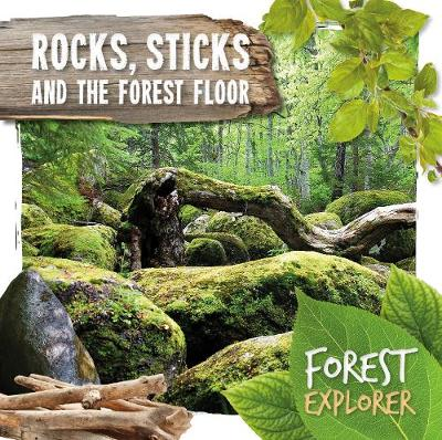 Rocks, sticks and the forest floor