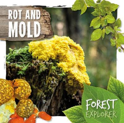 Rot and mould